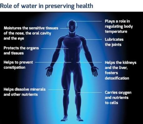 Water preserves health
